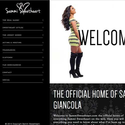sammi_example